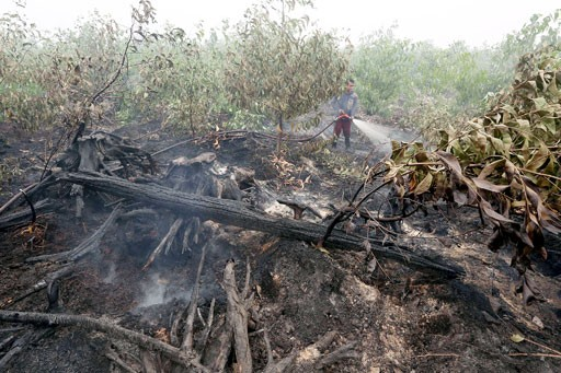 Officers spray water on forest fires in a concession area in Tulung Selapan, Ogan Komering Ilir, South Sumatra, in this Oct. 28, 2015, file photo.