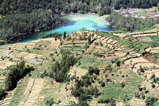 Government warns of possible danger in Dieng Plateau