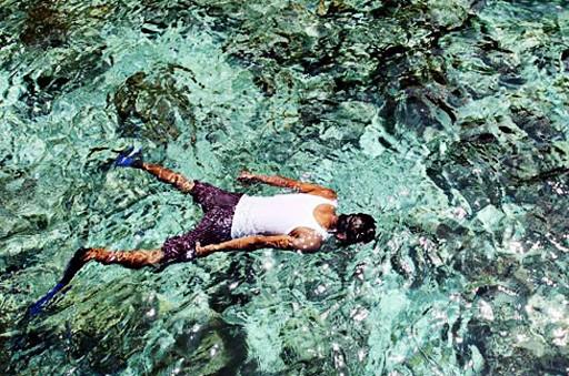 Illegal fishing threatens coral reef in Sawu Sea