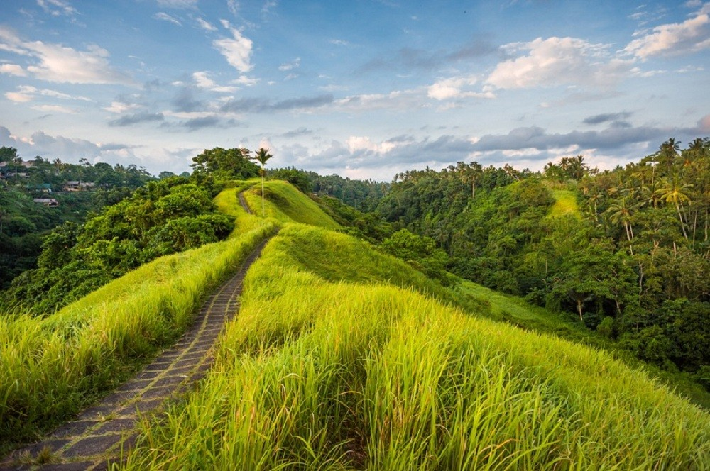 Ubud among world's best destinations in 2016: Report
