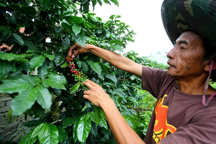Coffee guerrillas fighting for the perfect cup