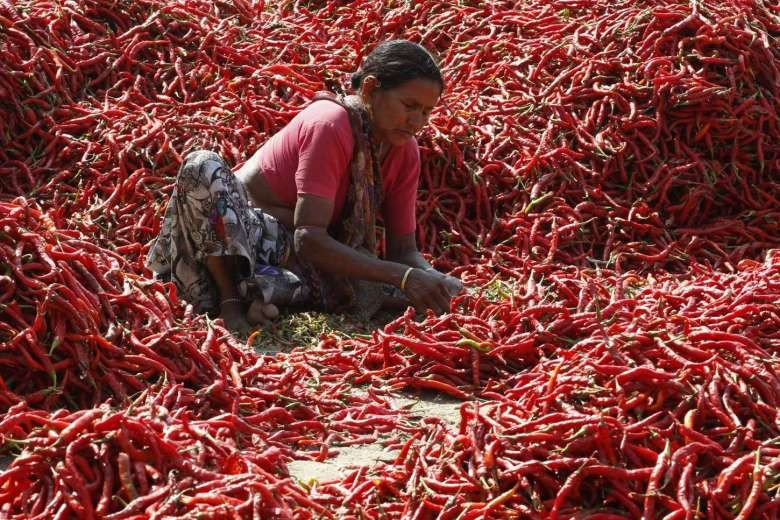 Viagra women ahmedabad