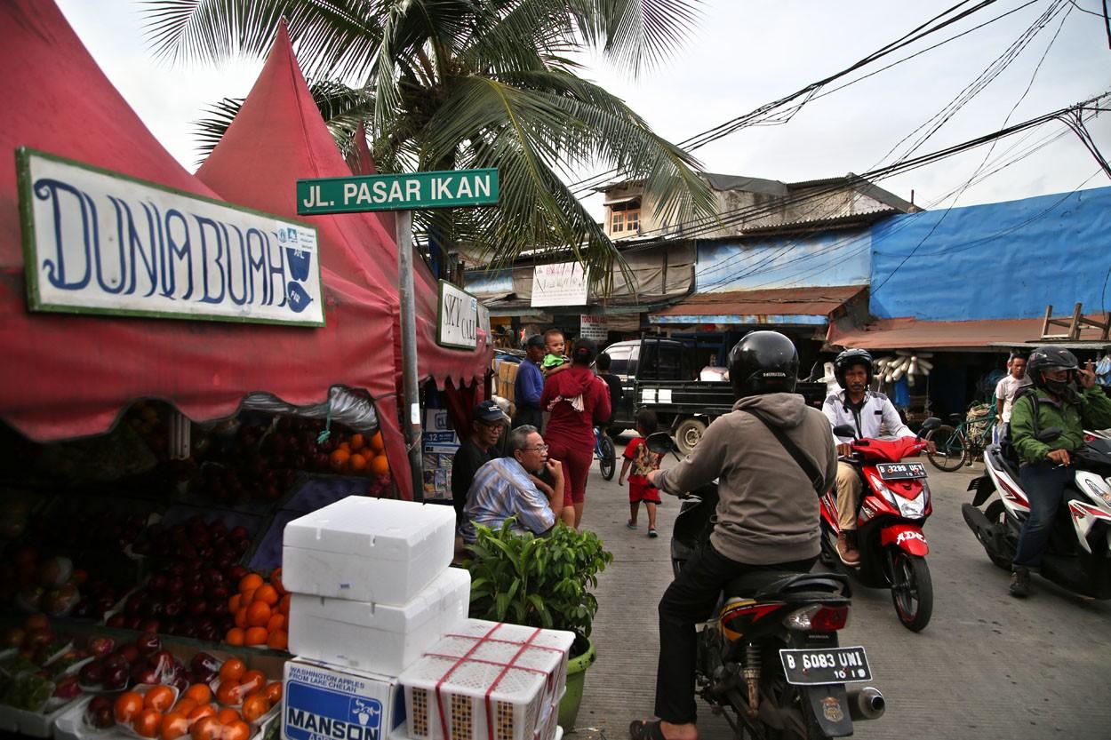 The Rehabilitation of Luar Batang