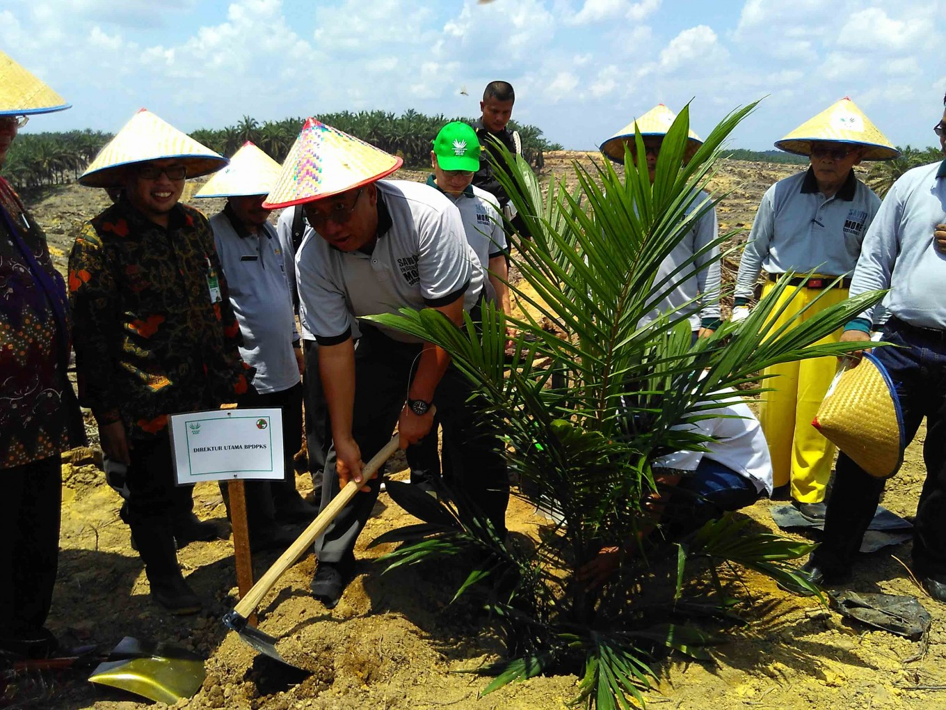 Oil Palm Fund invests Rp 6.75 billion with smallholders