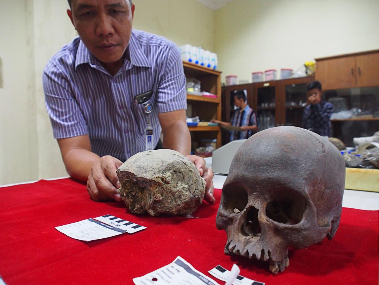 Ancient human skull discovered in Sangiran