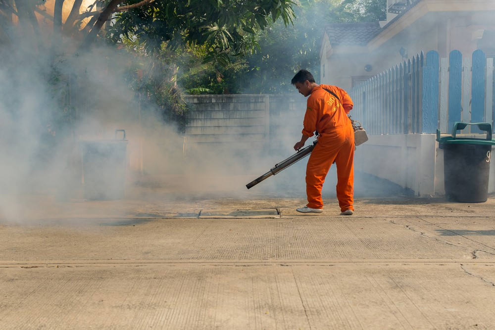 City braces for dengue alert period in February, March