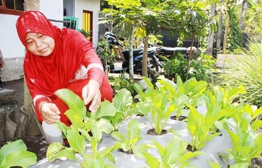 ASEAN members seek to improve agricultural standards