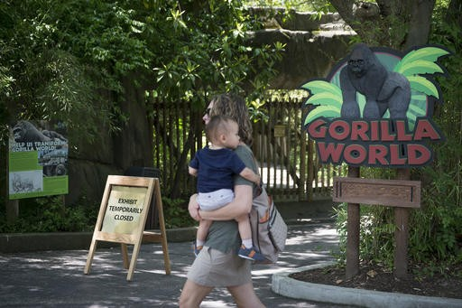 'Mommy loves you!': Boy rescued after gorilla is shot at zoo