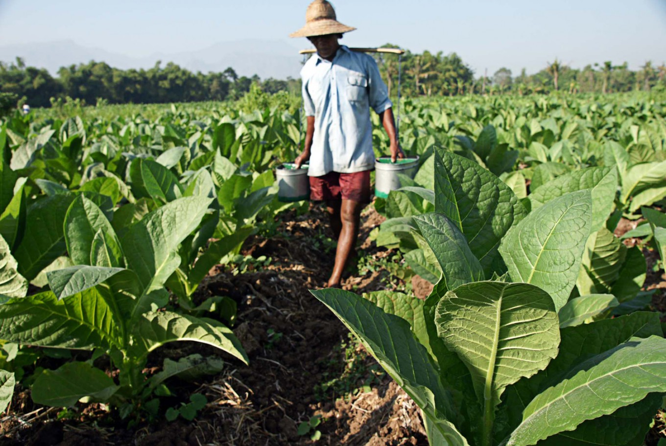 E. Java rejects foreign intervention in tobacco industry