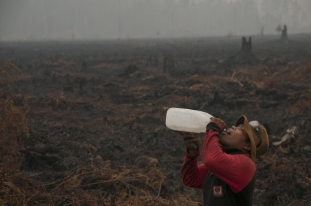 Indonesia still far from greenhouse gas reduction target
