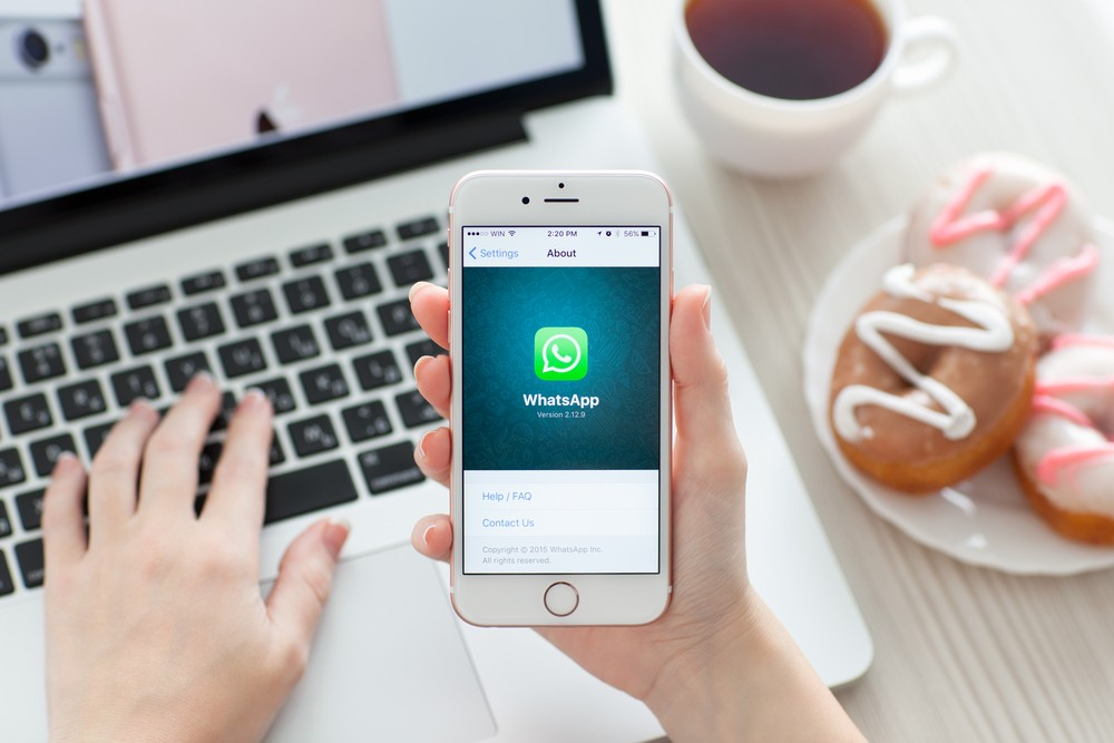 WhatsApp now allows video calls, sending GIFs - Science & Tech - The