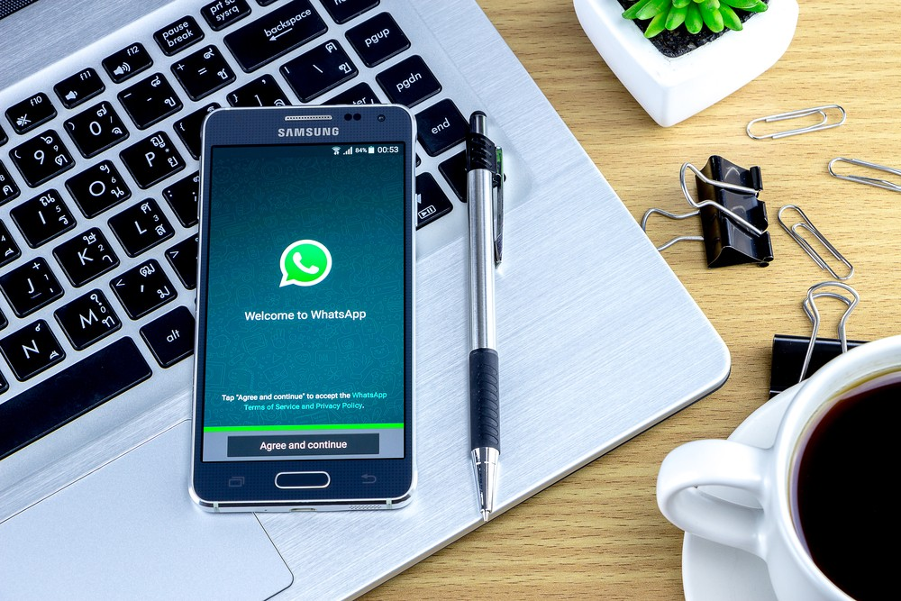 How I learned to stop worrying and love the workplace WhatsApp group