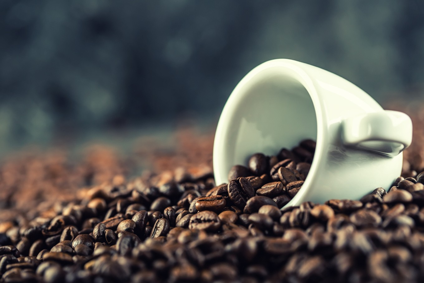 Coffee delivery service strives to satiate specialty cravings