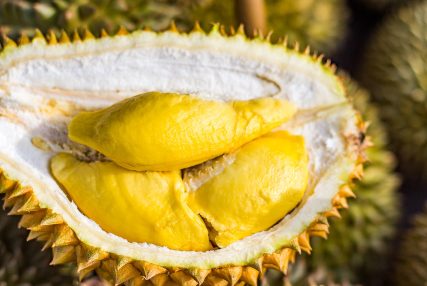 Malaysia bets on durian as China goes bananas for world's smelliest fruit