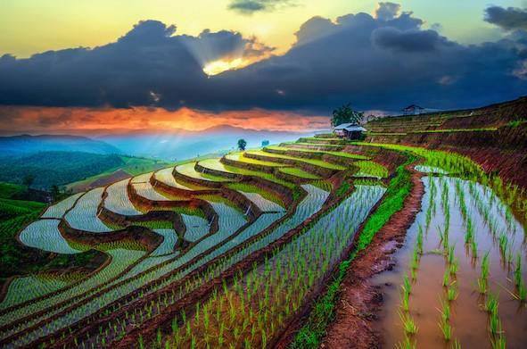 keindahan alam Indonesia. foto oleh thejakartapost.com