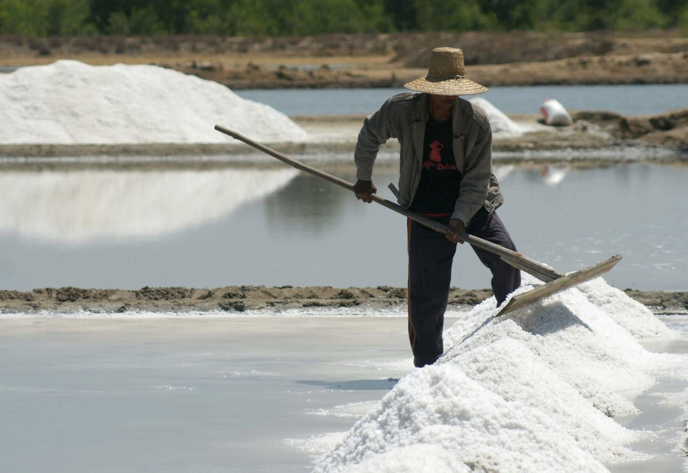 Indonesia to import 75,000 tons of salt from Australia