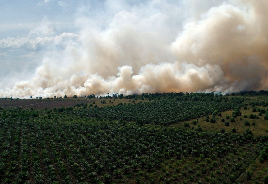 Riau fire spreads haze to nearby areas