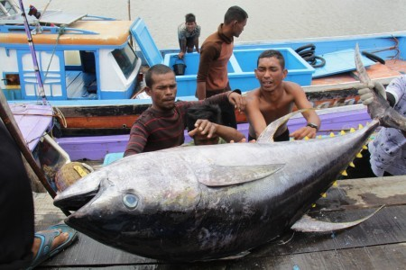 Fishermen, including from Indonesia, 'kept like slaves' in Taiwan