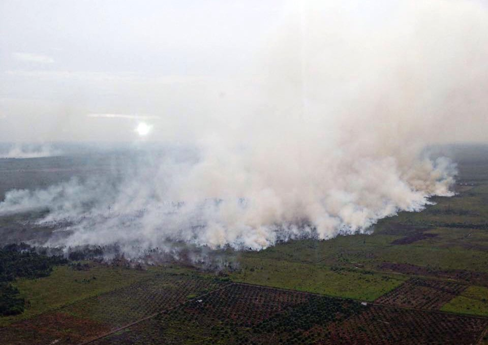 From the haze to sustainability