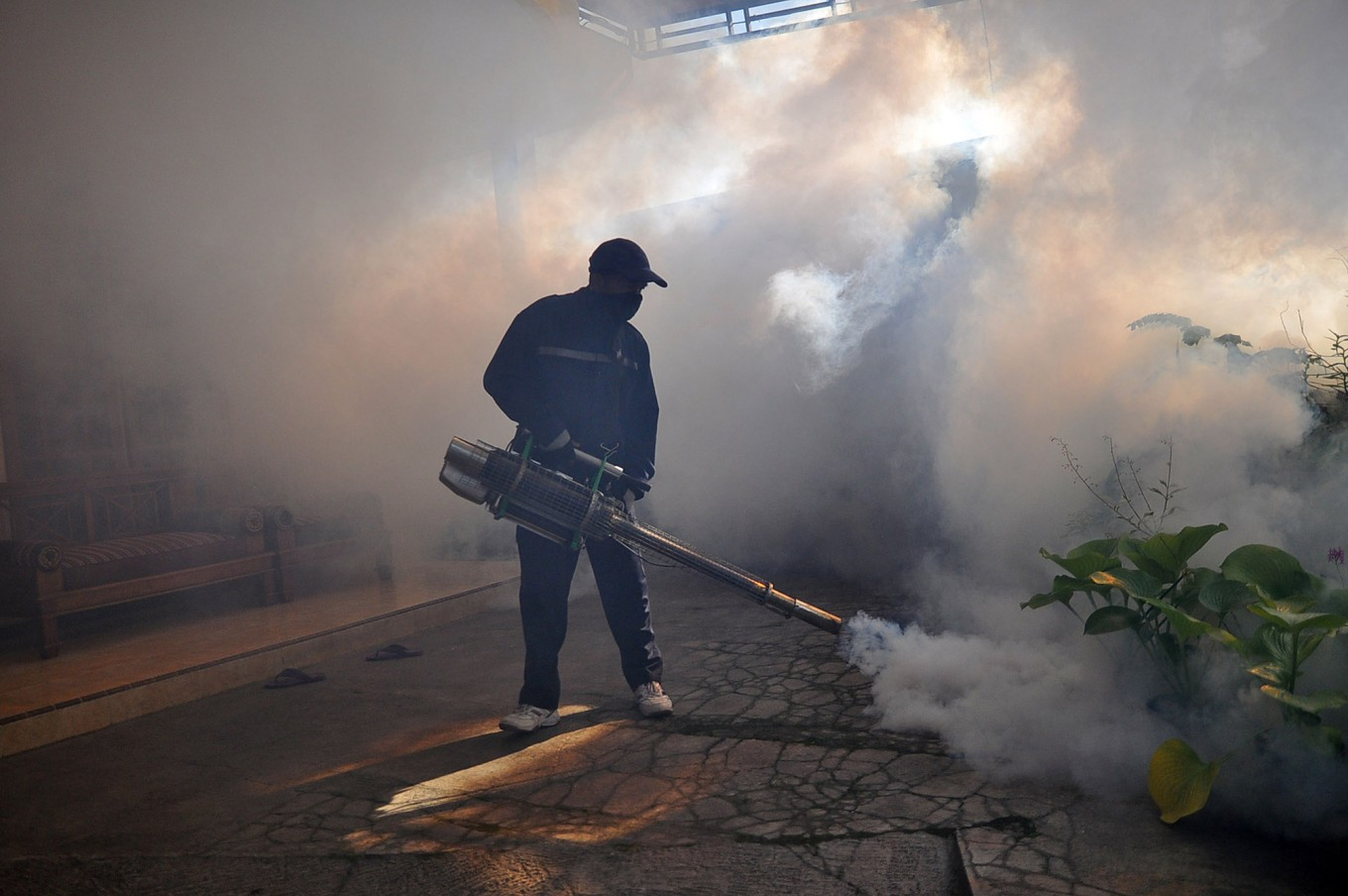 Dengue fever kills 104, infects more than 17,000 nationwide since January