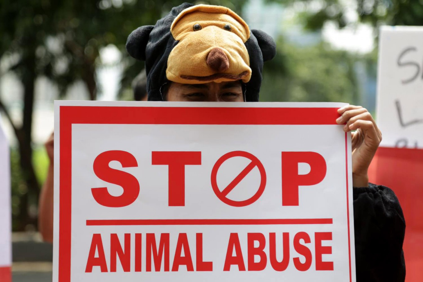Animal Abuse Case - cover