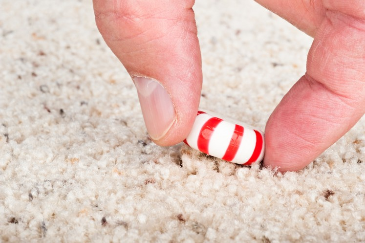 Study: Five-second rule is too generous for fallen food