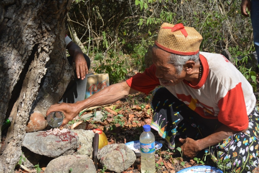 Flores plans for tourism with traditional rituals