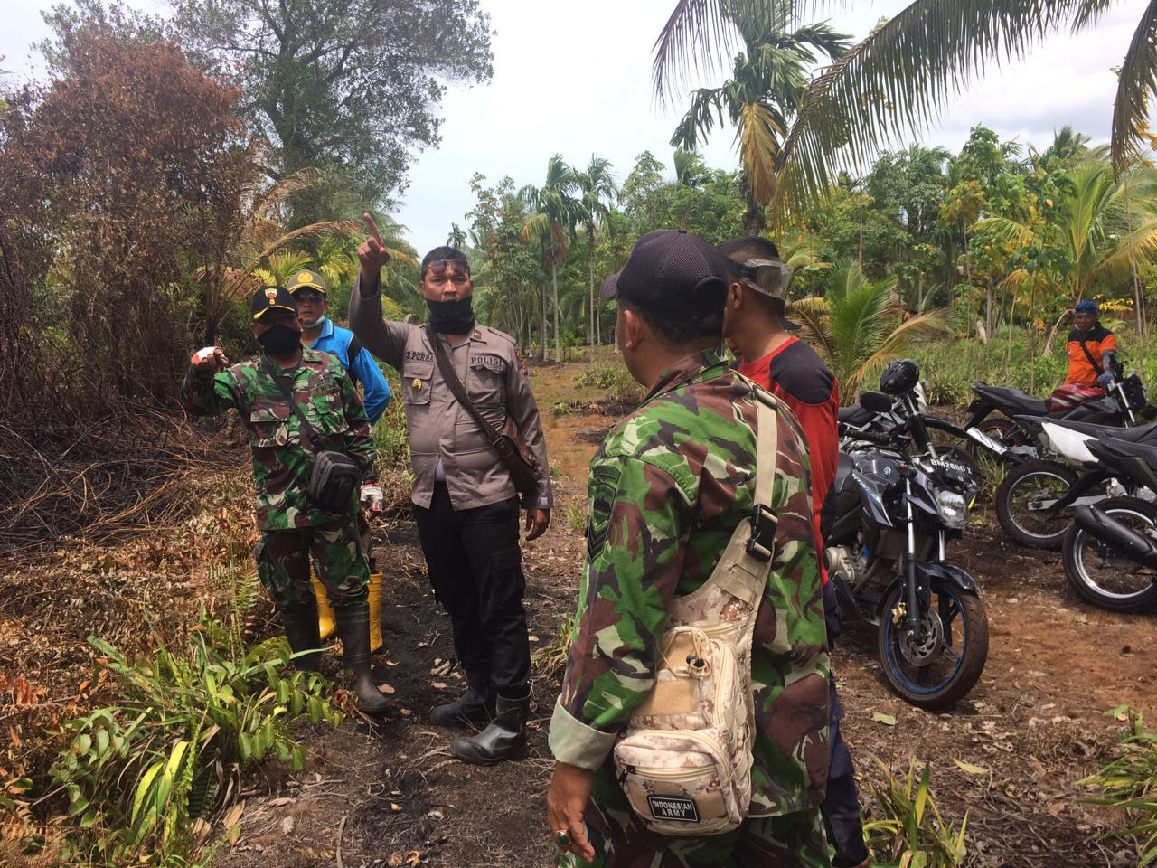 Rain extinguishes Meranti Islands forest fire