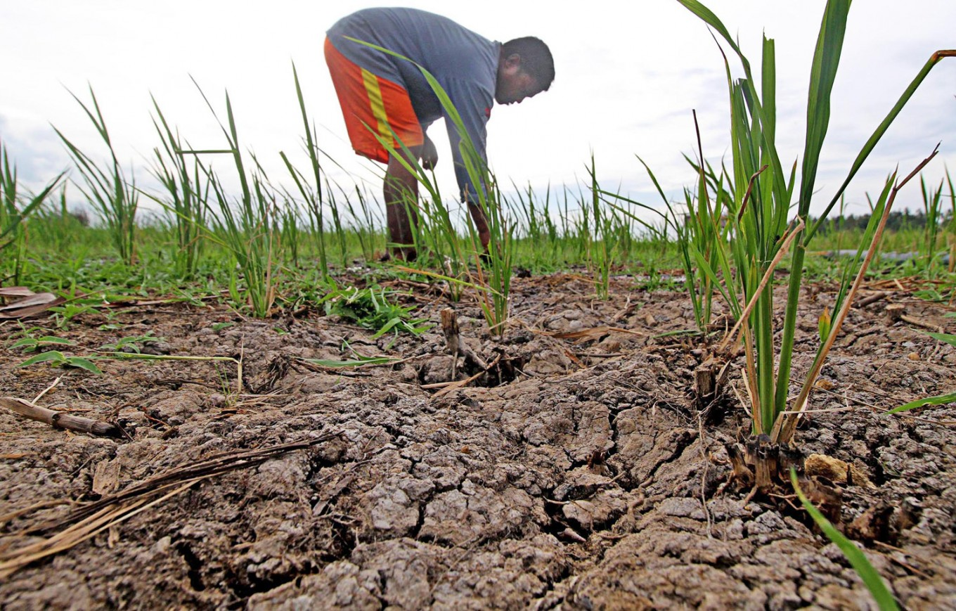 Climate-proofing Southeast Asia