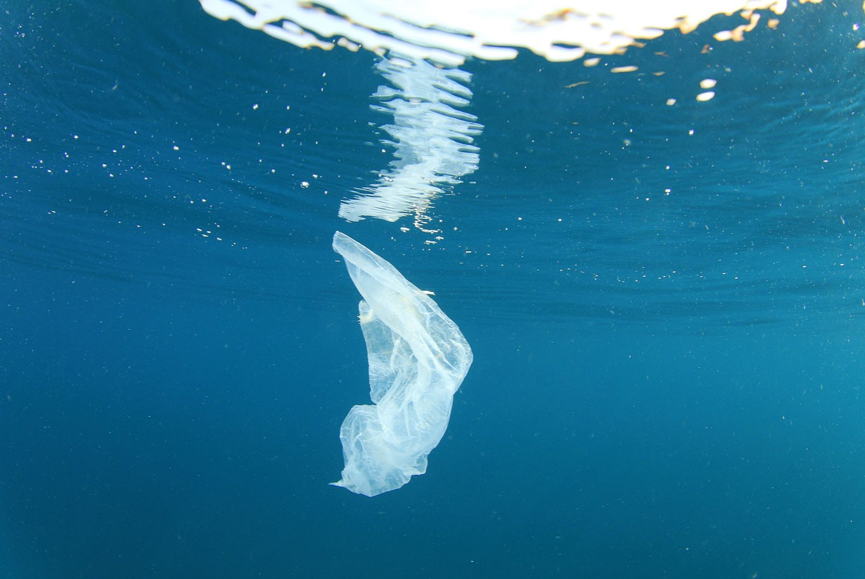 Oceans For Fish Not Plastic