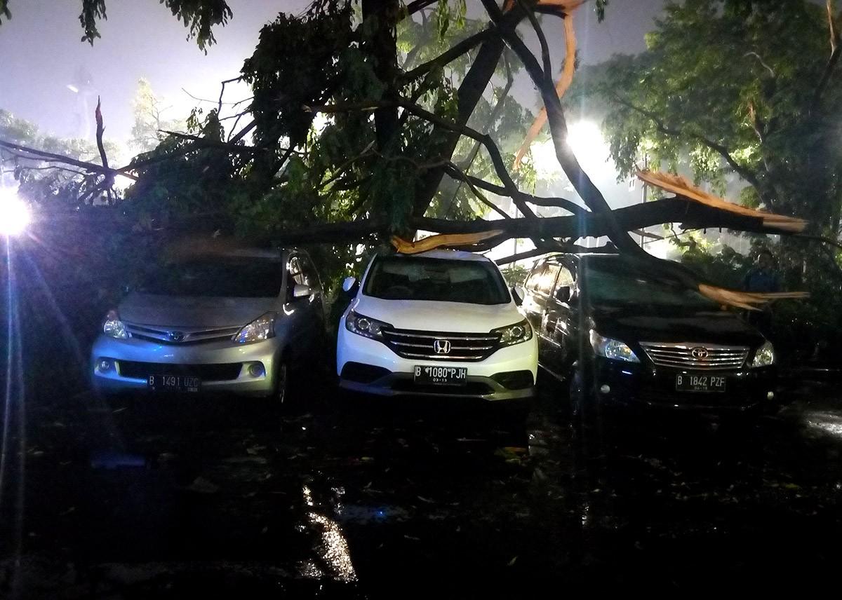 Trees, billboard fall after heavy rainfall hits Jakarta