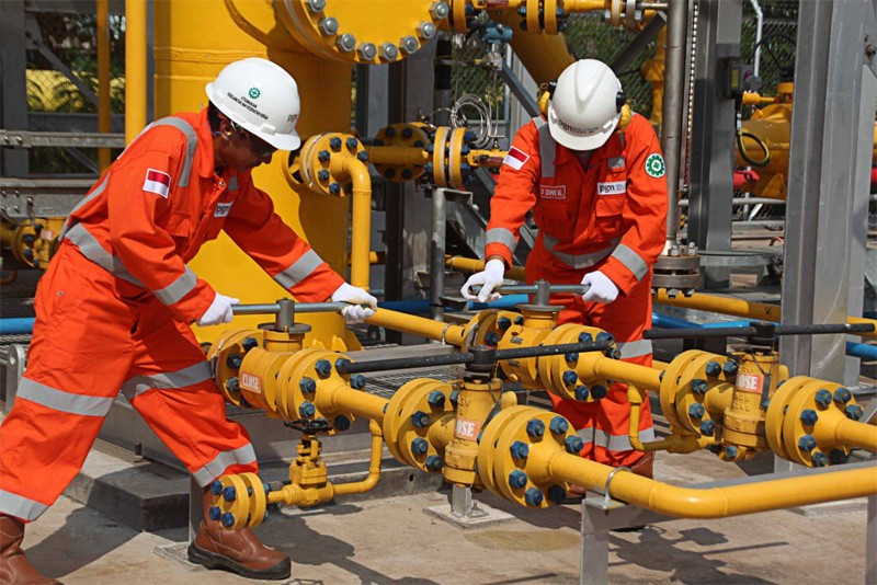 Japan's Inpex signs gas sale MoU with state-owned PGN