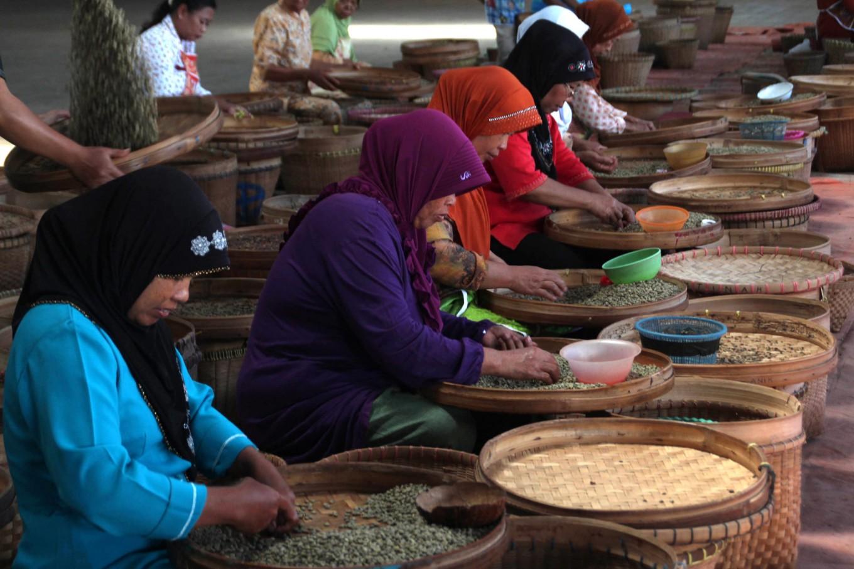 Photo Banaran Coffee A Legendary Century Old Tale