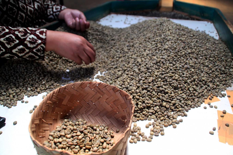 Indonesia seeks to re-brew its coffee glory