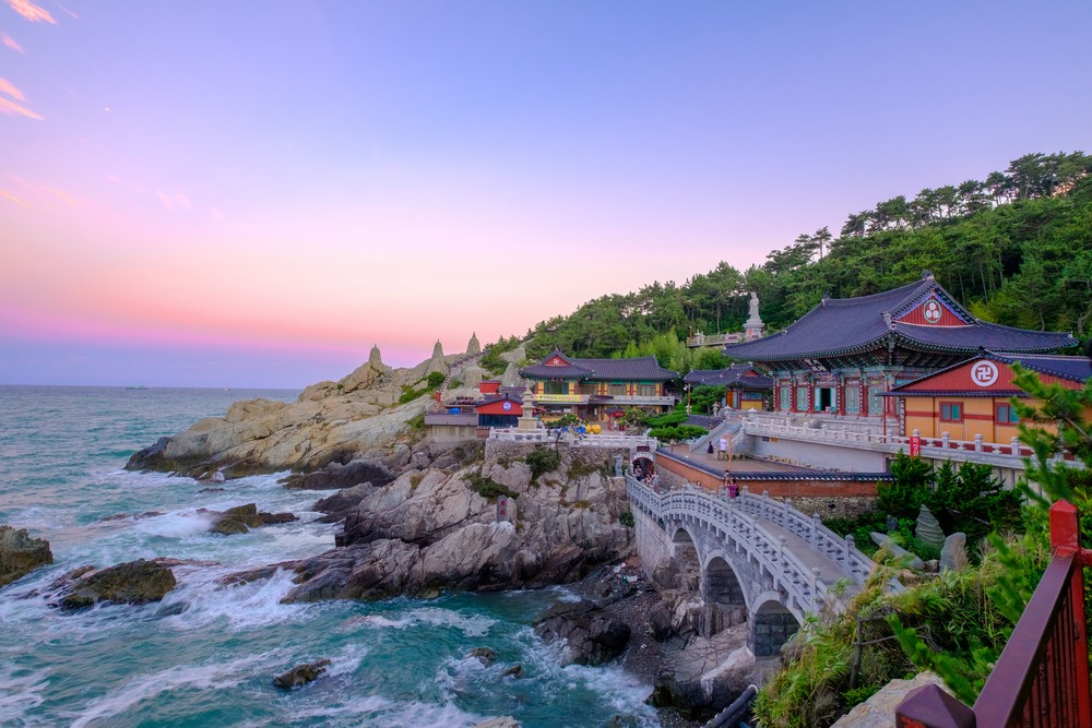 'Life in Busan' expat guidebook published