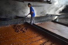 Sulis, 30, rakes the brown sugar to be packed into 50-kg sacks in a home industry in Genengan village in East Java. JP/ Aman Rochman