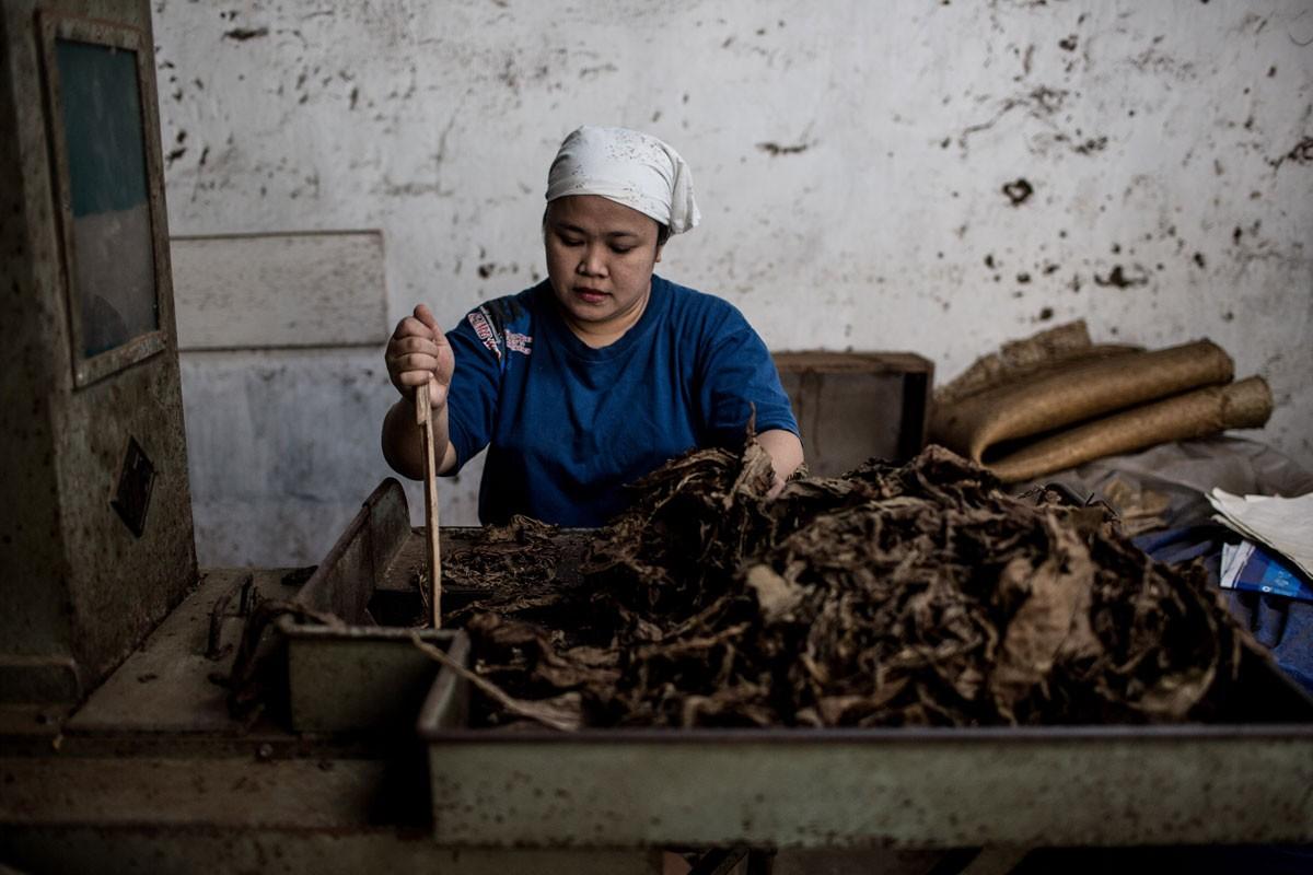 Jokowi opts to kill tobacco bill