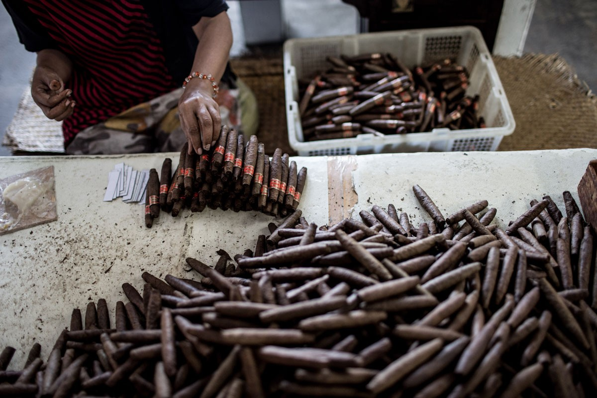 A man puts labels on the cigars in the Rizona Baru factory in Temanggung, Central Java. The factory was built in 1910 by Oo Tjong Han, a Chinese immigrant who lived in Temanggung. Every day the factory can produce 3,000 cigars, which are manually crafted by the skilled hands of the workers, who are mostly women. JP/Agung Parameswara