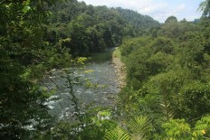 Gorontalo's Bone River with the background of the Bogani Nani Wartabone National Park. JP/ Syamsul Huda M Suhari