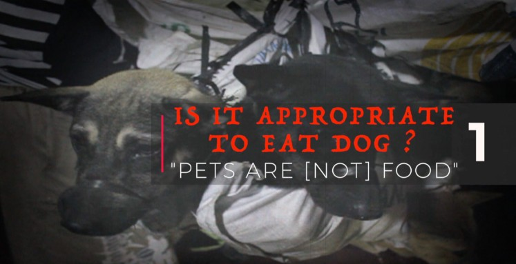 Is it appropriate to eat dog?  Series 01: Pets are (not) food