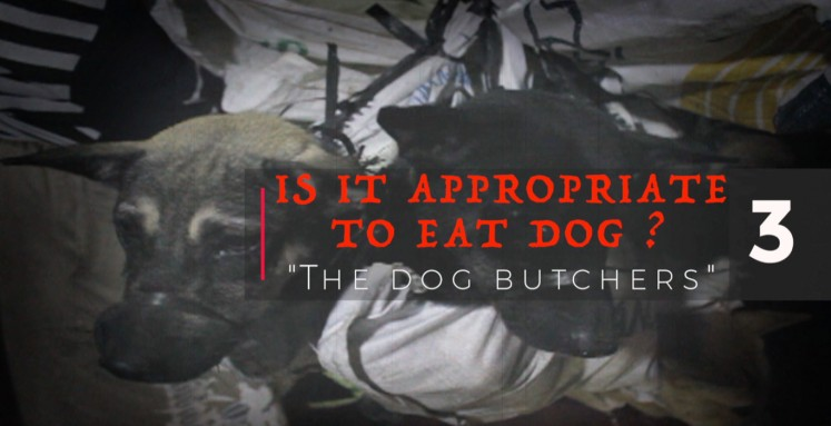 Is it appropriate to eat dog? Series 03: Dog butchers