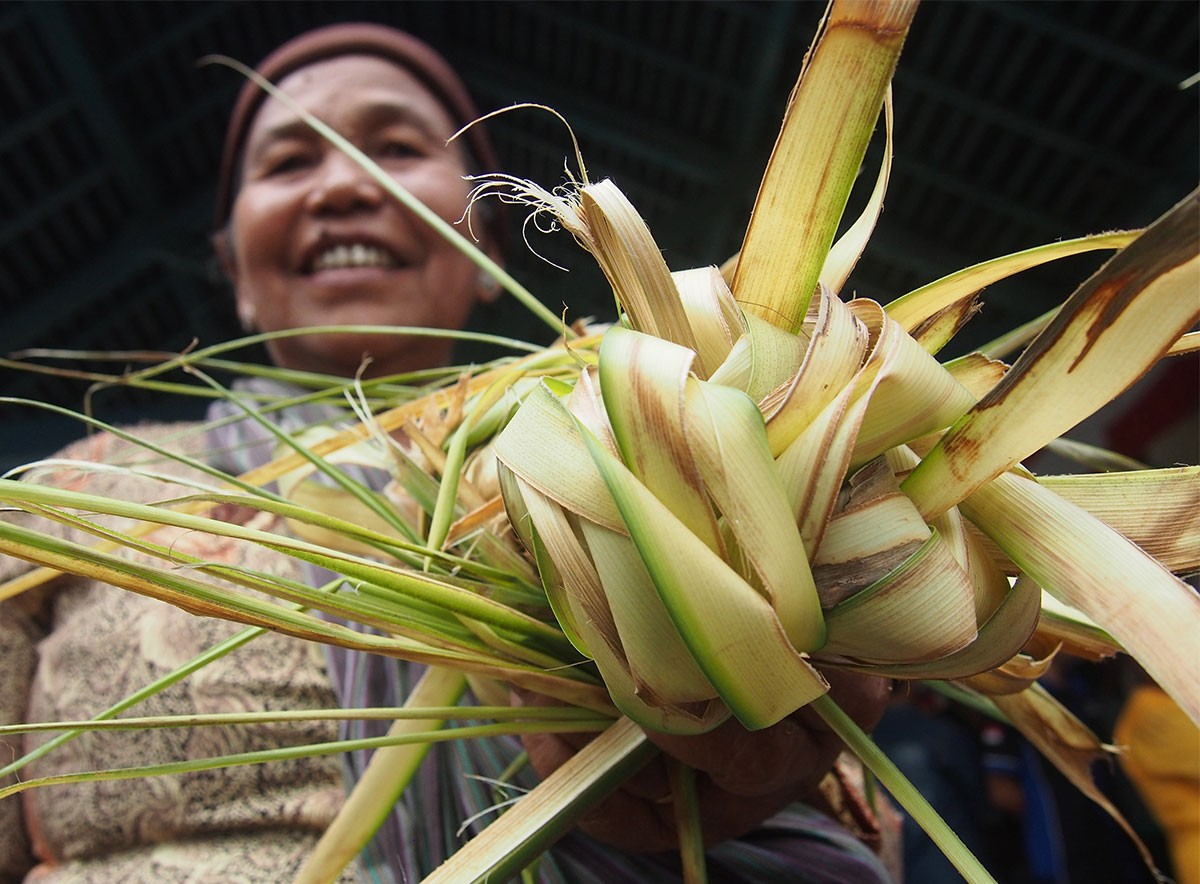 A Surakarta resident holds young coconut leaves successfully snatched from a gunungan [cone shaped offerings] during Sekaten. JP/Ganug Nugroho Adi