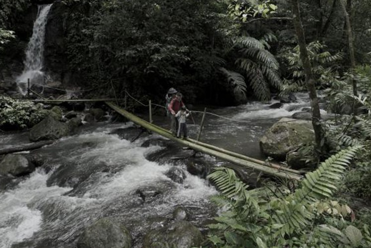 West Java national park offers fun treks for the family