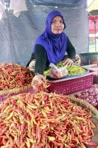 Jakarta to grow chili on 2.5 hectare plot of land, next month