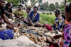 """Women, colloquially called """"mama mama"""" in Papuan, peel off tubers. The tubers will be cooked with hot stones too. JP/ Vembri Waluyas"""