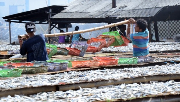 'New industries' to be built in Muara Angke