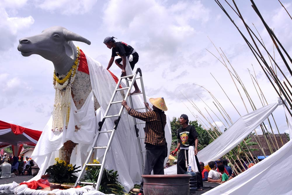 A man climbs on top of the buffalo to unveil the white cloth covering the statue before the ceremony of the Kebo Ketan slaughter in Sekarputih village, Widodaren, Ngawi, East Java last month. JP/ Magnus Hendratmo