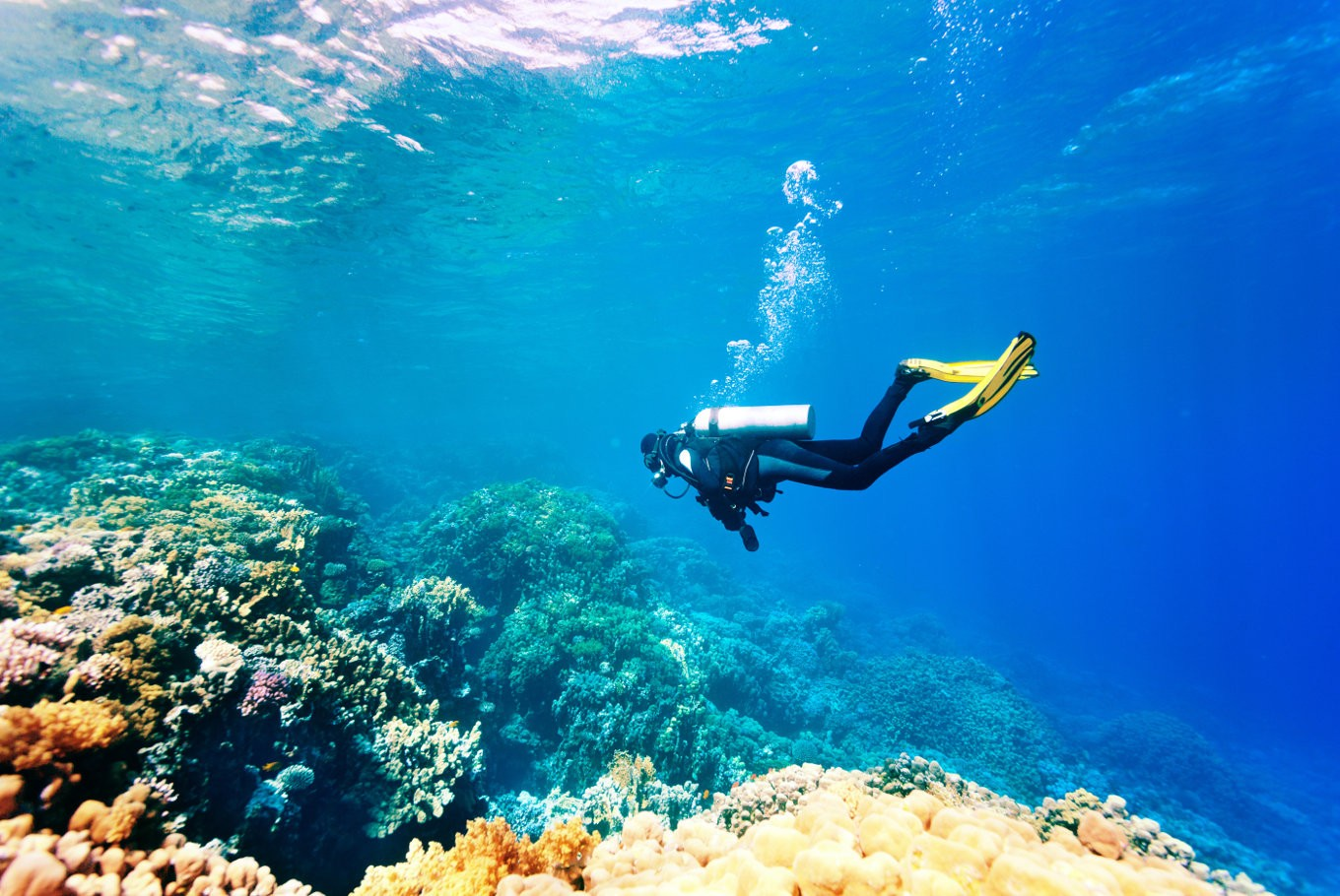 The ultimate experience: Scuba diving in Bali