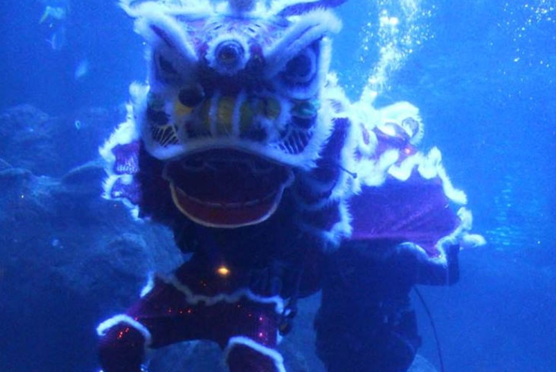 Seaworld to host underwater 'barongsai' performance