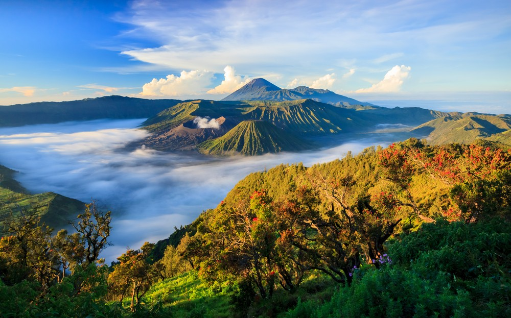 Yadnya Kasada ritual returns to Mount Bromo